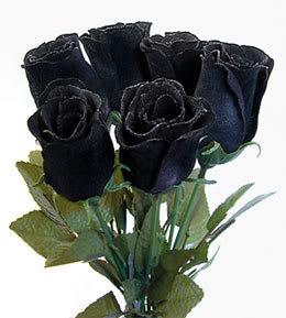 Mawar%2Bhitam  7 Arti Warna Pada Bunga Mawar